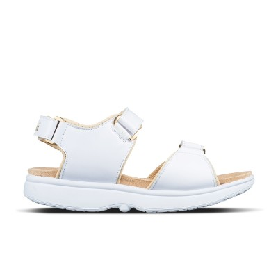 Avant SP Light White/Gold